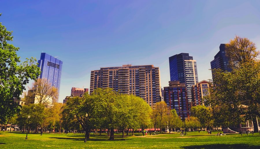 Best Family Hotels in Boston