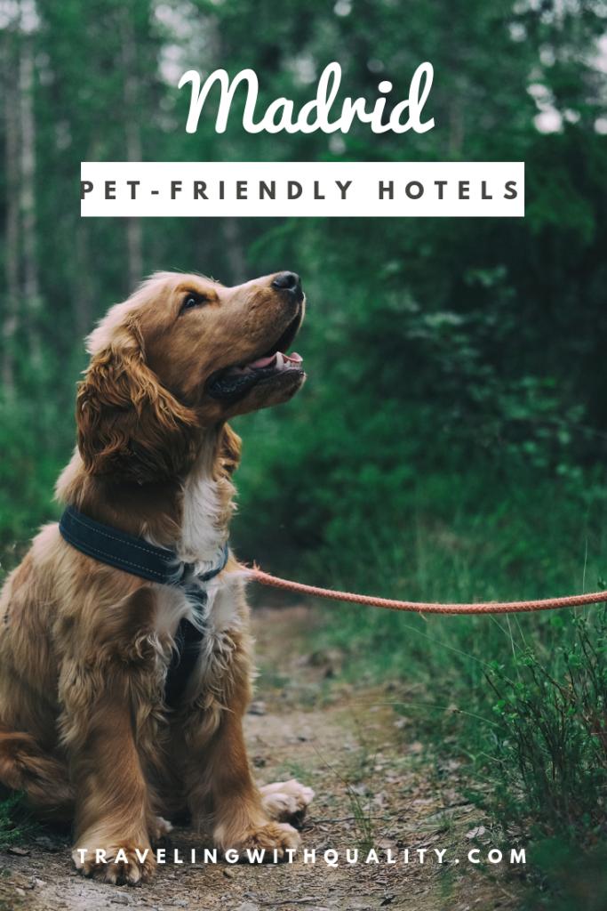pet-friendly hotels madrid